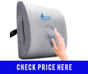 5 Best Lumbar Support Cushions For Lower Back Pain Reviews Guide